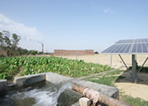 Maharashtra to give out 1 Lakh Solar Pumps